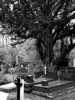 Highgate Cemetery of London 03 by PietrOtelloRomano