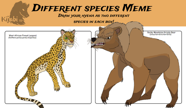 Kijabi Species Meme with Zwartkop by Patchi1995