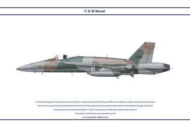Hornet Kuwait 1 by WS-Clave
