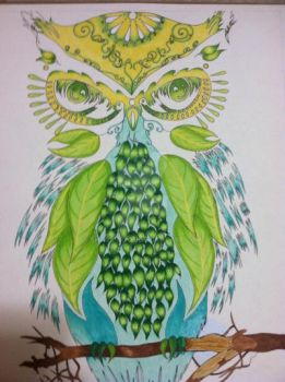 Nature Owl Commission  by sharshar27