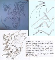 Drawing Tips: Dragon side-view by Popgrafix