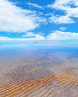 serene lake premade background by yellowicous-stock