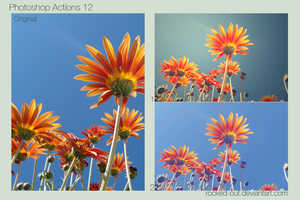 Photoshop Actions 12 by oridzuru