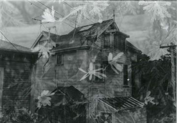 Double Exposure The House and Flowers by VenusFlowerDesignNZ
