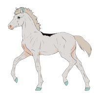 N3136 Padro Foal Design by casinuba