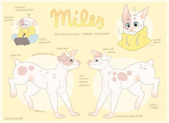 Miles reference (fursona) by SketchNtea