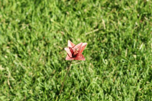 Un-named Copper Flower(1) by JustJ20