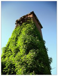 The Old Tower by osmo