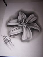 Flover by justTattoo