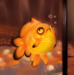 Grumpy Gold Fish by DroseAttack
