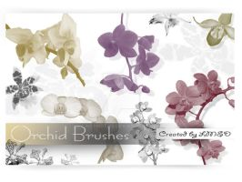 Orchid Brush Set by Mephotos