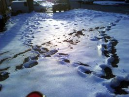 Trails of Snowy Footprints by sourskittles70