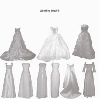 Wedding Dress Brushes 2 by farmerstochter