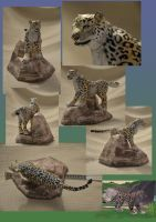 Zoo Tycoon Paper Collection - Snow Leopard by DrWheelieMobile
