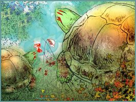 Turtles' Garden by altergromit