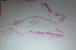 Lounging Pink Bunny by wolfy987