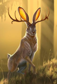 Jackalope #2 by IntoTheBear