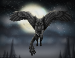 The Song of the Summer King ~ Night Flight by TheStormUnleashed