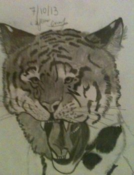 Tiger head by ICE46