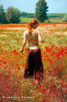 Fields of Red by Leverson