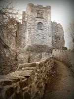 Medieval Castle 1 by iriscup
