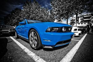 blue mustang by AmericanMuscle