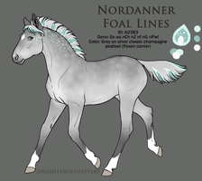 A2383 - Nordanner Foal Design by Ikiuni