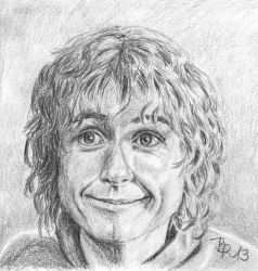 Peregrin Took by LoonaLucy