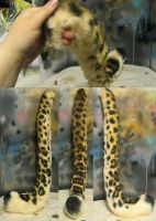 Leopard tail by Crystumes