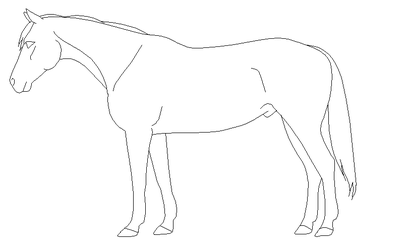 Coloring pages favourites by horses103 on deviantart for Thoroughbred coloring pages