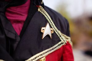 Badge (close up) by citizenkaneV