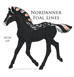 A5734 Nordanner foal Expired by EsaArts