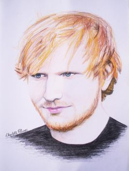 Ed Sheeran Coloured Pencil Portrait by ArtbyCharlotte