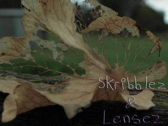 Leaf 1 | Set DLM by SkriBlerLenZ