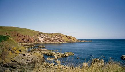 St Abbs Nature Reserve by tom1garry