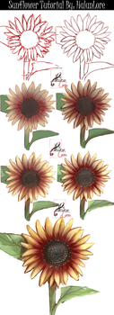 Sunflower Step by Step [video process] by HalanLore
