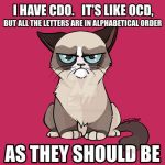 "Le syndrome de la mémoire de ""poisson rouge"" Ocd_grumpy_cat_by_linai-d6cqykp"