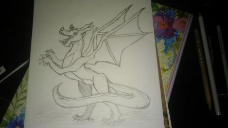 dragon by RNK50