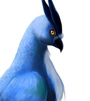Articuno by DrowningArrows