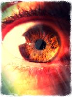 My eyes... by guarrais