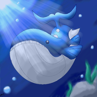 Wailord in the ocean
