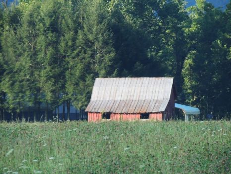 Barn in NC by Hippiecheese777