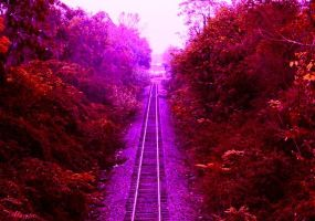 Train To The Enchanted Forest by jester81