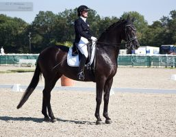 National Dressage and Jumping_20 by CalyHoney
