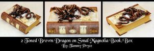 Ooak Polymer Clay Brown dragon on Magnolia Book by Tpryce