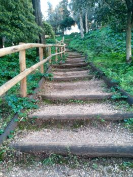Image No4 Steps-Up by LNoeh