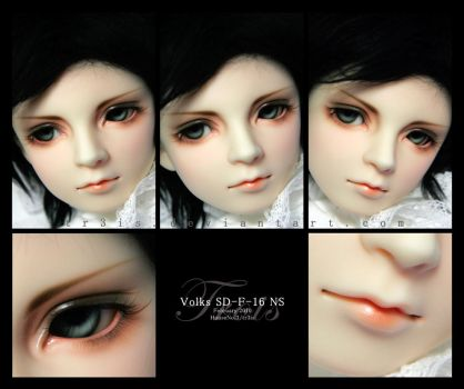 Face-up:Volks SD-F-16 NS by tr3is
