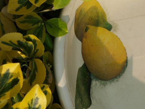 Wooden plate with lemon by Inkwizytorium