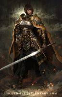 The Knight by shizen1102