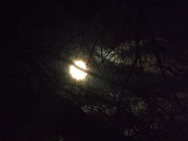 Bright full moon by MindlessAngel